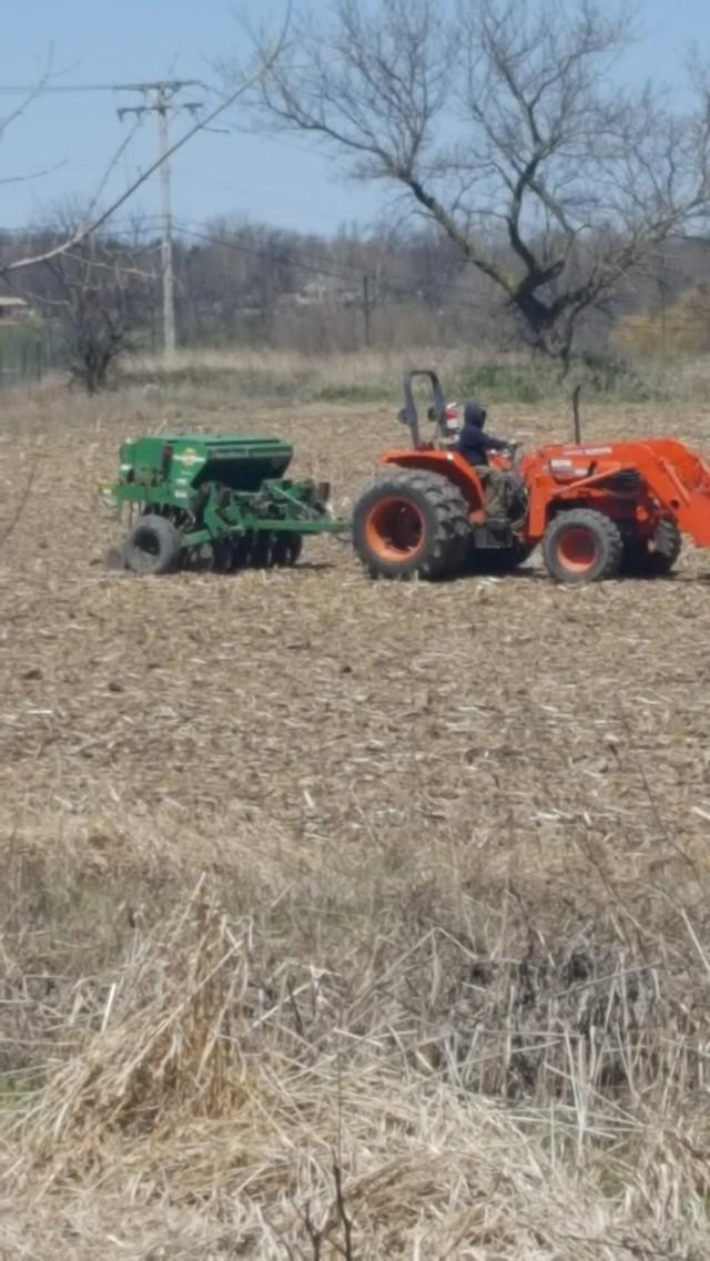 drill seeding 3