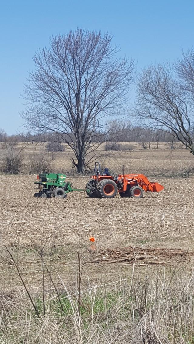 drill seeding 4